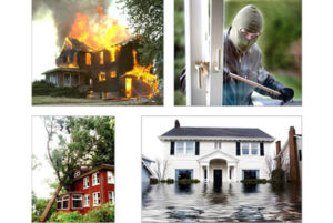 what does a loss adjuster do